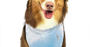 Sitear Halstuch Set fuer Hunde und Katzen Fruehlingsblumen und Tauben im 310x165 - Sitear Halstuch-Set für Hunde und Katzen, Frühlingsblumen und Tauben im Sonnenhimmel, Dreieck, Halstuch für kleine bis große Hunde