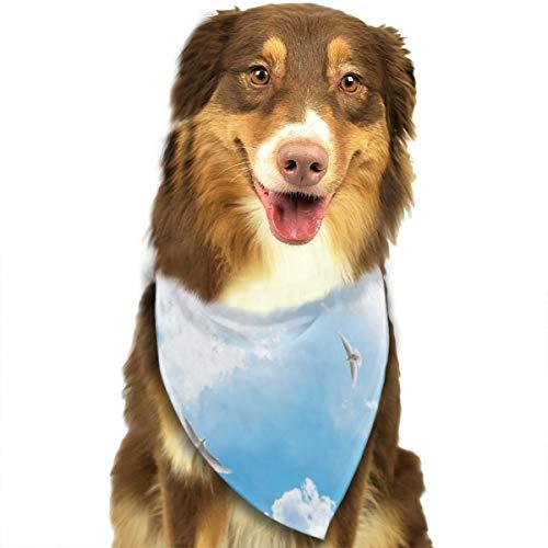 Sitear Halstuch-Set für Hunde und Katzen, Frühlingsblumen und Tauben im Sonnenhimmel, Dreieck, Halstuch für kleine bis große Hunde